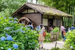 水車小屋 府中市郷土の森博物館