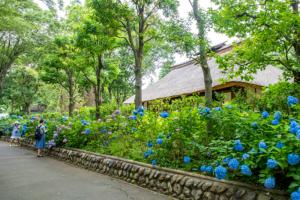 旧府中町役場 府中市郷土の森博物館